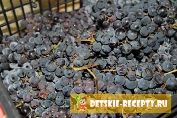 дачный виноград