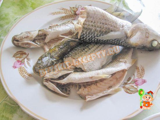 морская рыба кефаль
